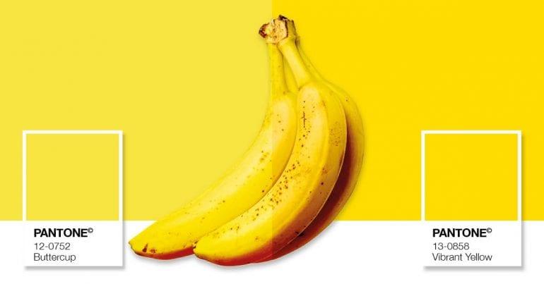 Wat je van de kleur van bananen kunt leren