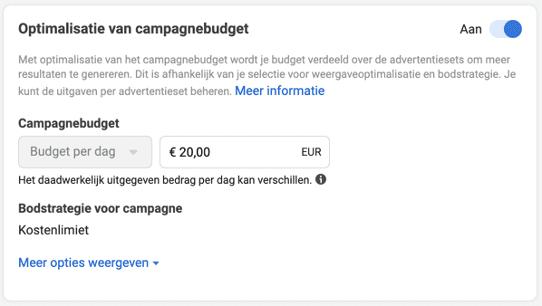 Optimalisatie van campagnebudget