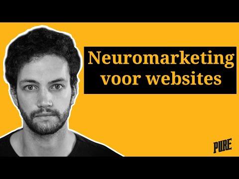 Neuromarketing voor websites, hoe werkt dat? – Het Pure Lab