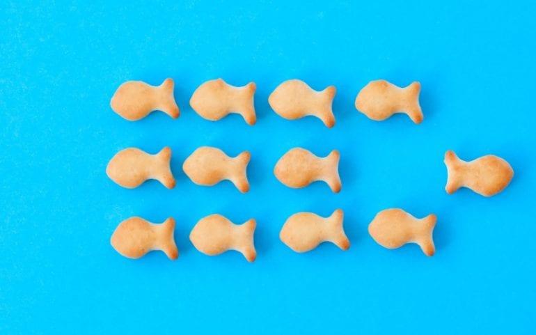 Groepsdenken versus individueel denken: vis zwemt in tegengestelde richting van de groep